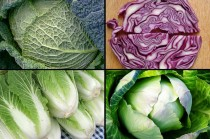 Include different types to enjoy the broader health benefits of cabbage.